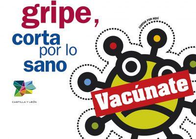 campaña gripe 2017/18 flu campaign