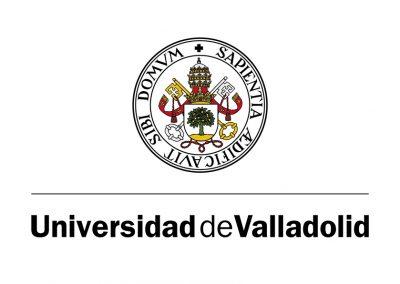 universidad de valladolid logomarca y manual de identidad visual corporativa